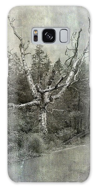 White Birch Last Statement  Galaxy Case by Betty  Pauwels