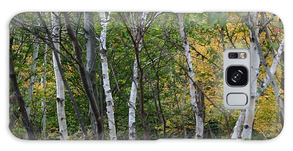White Birches In The Woods Galaxy Case by Denyse Duhaime