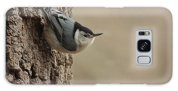 White-breasted Nuthatch Galaxy Case
