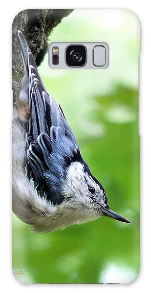 White Breasted Nuthatch Galaxy Case by Christina Rollo