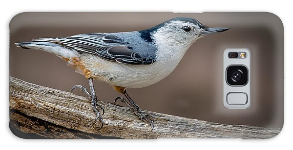 White Breasted Nuthatch Galaxy Case by Steve Zimic