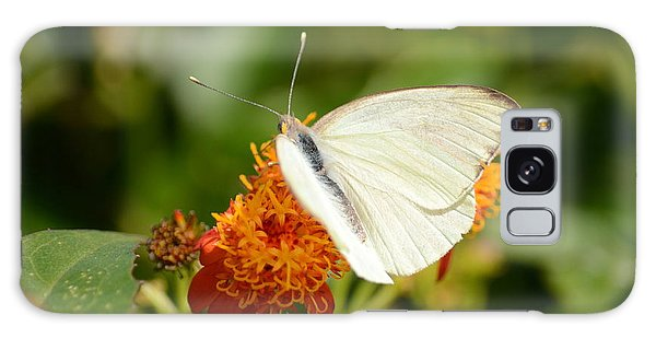 White Butterfly On Mexican Flame Galaxy Case by Debra Martz