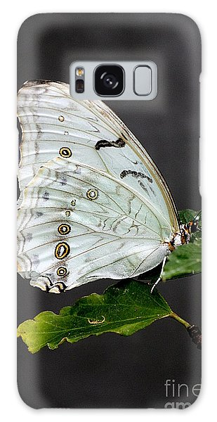 White Butterfly Galaxy Case