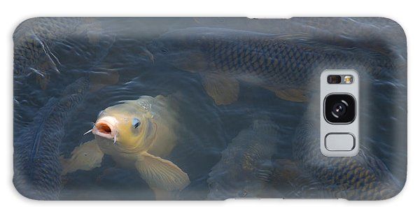 White Carp In The Lake Galaxy Case
