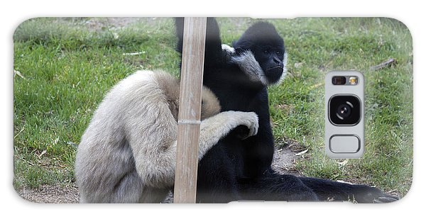 White-cheeked Gibbon - 0001 Galaxy Case by S and S Photo