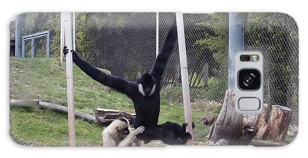 White-cheeked Gibbon - 0003 Galaxy Case by S and S Photo