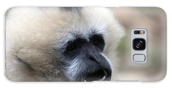 White-cheeked Gibbon - 0009 Galaxy Case by S and S Photo
