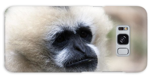 White-cheeked Gibbon - 0010 Galaxy Case by S and S Photo