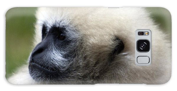 White-cheeked Gibbon - 0011 Galaxy Case by S and S Photo