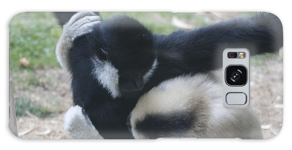 White-cheeked Gibbon - 0012 Galaxy Case by S and S Photo