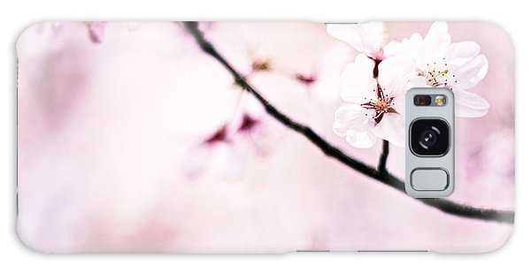 White Cherry Blossoms In The Sunlight Galaxy Case