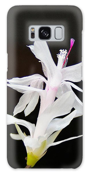 White Christmas Cactus Galaxy Case by B Wayne Mullins