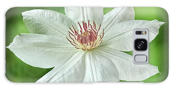 White Clematis Galaxy Case by Richard Farrington