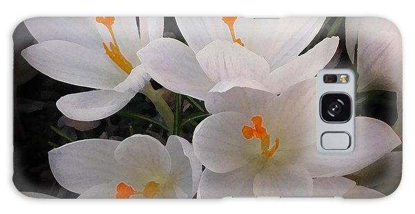 White Crocuses Galaxy Case