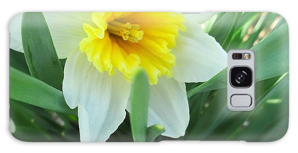 White Daffodil Galaxy Case