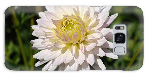 White Dahlia Flower Galaxy Case