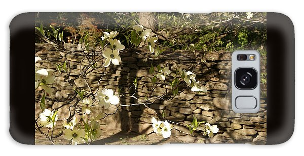 White Dogwood At The Stone Wall Galaxy Case by Margie Avellino
