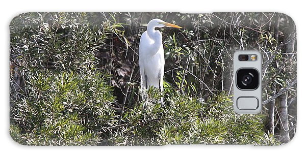 White Egret In The Swamp Galaxy Case by Christiane Schulze Art And Photography