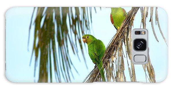 White-eyed Parakeets, Brazil Galaxy Case