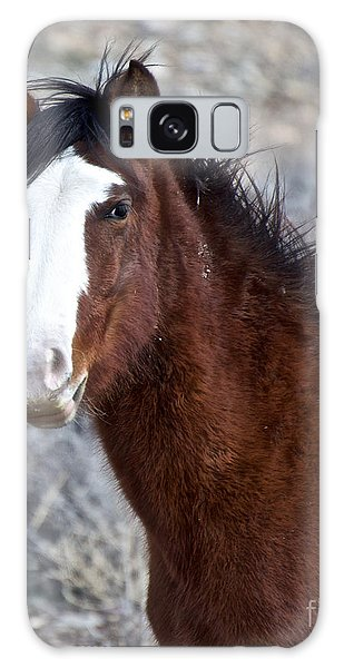 White-faced Mustang In December V Galaxy Case