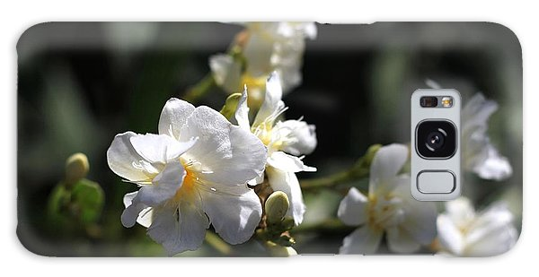 White Flower - Early Spring Time Galaxy Case by Ramabhadran Thirupattur