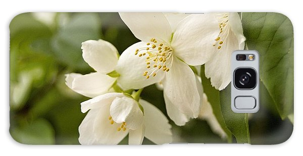 White Garden I Galaxy Case