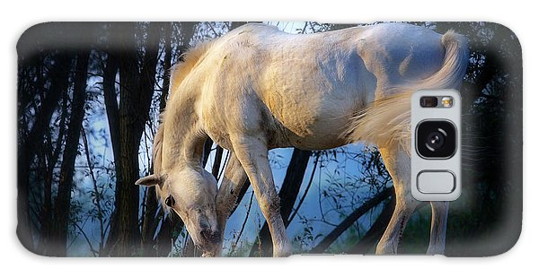 White Horse In The Early Evening Mist Galaxy Case by Nick  Biemans