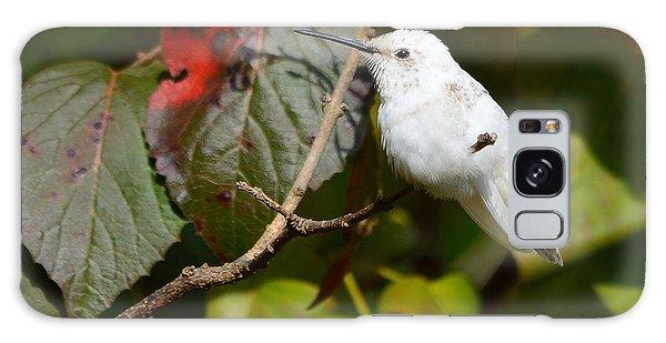 White Hummingbird Galaxy Case
