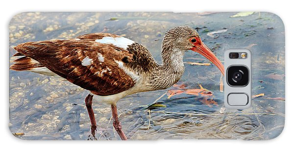 White Ibis Juvenile Galaxy Case