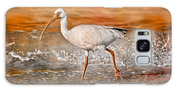 Ibis Galaxy S8 Case - White Ibis Stroll by Betsy Knapp