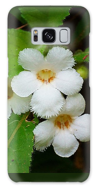 White Jungle Wildflower Galaxy Case by Blair Wainman