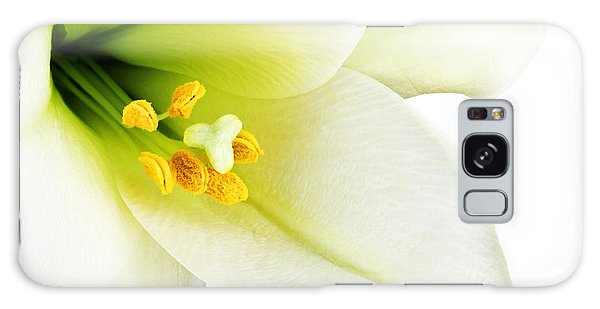 Blossoms Galaxy Case - White Lilly Macro by Johan Swanepoel