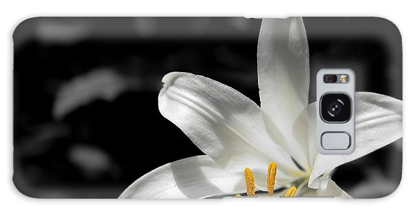 White Lily With Yellow Stamens Against Dark Background Galaxy Case