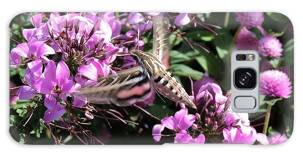 White-lined Sphinx Moth Galaxy Case by Teresa Schomig