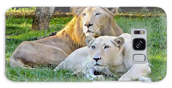 White Lion And Lioness Galaxy Case by Venetia Featherstone-Witty