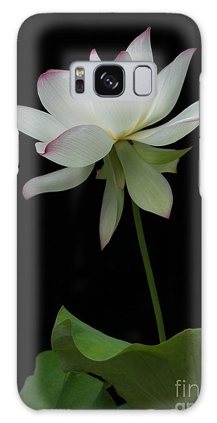 White Lotus Galaxy Case