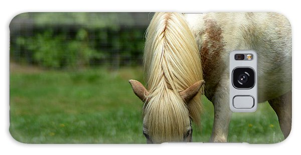White Miniature Horse Galaxy Case by Eva Thomas