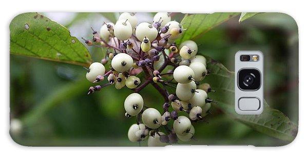 White Mountain Berries Galaxy Case by Amanda Holmes Tzafrir