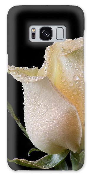 White Rose Close-up Galaxy Case