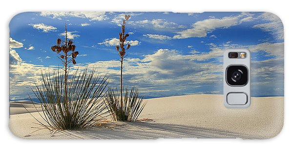 White Sands Afternoon 2 Galaxy Case by Alan Vance Ley