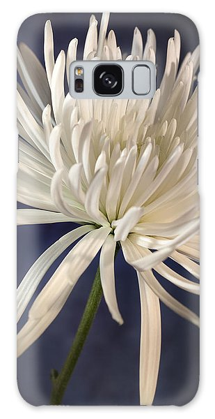 White Spider Mum On Blue Galaxy Case
