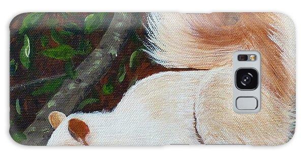 White Squirrel Of Sooke Galaxy Case