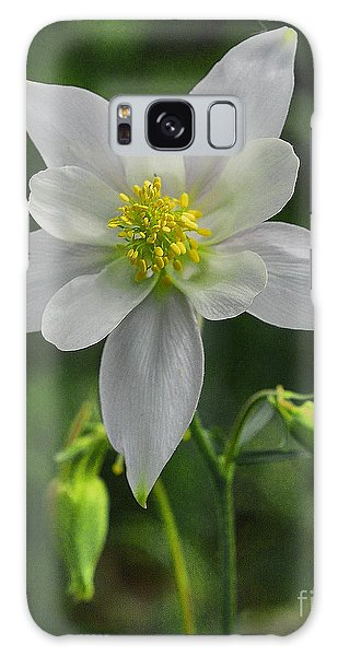 Galaxy Case featuring the digital art White Star Flower by Mae Wertz
