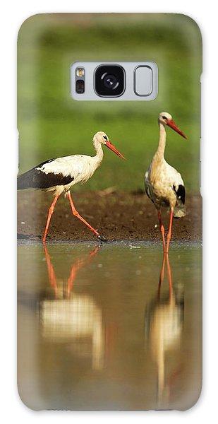 White Stork (ciconia Ciconia) Galaxy Case