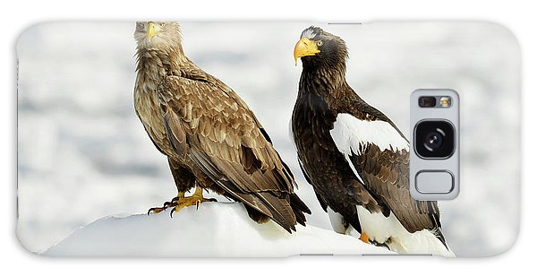 Behaviour Galaxy Case - White-tailed And Steller's Sea Eagles by Dr P. Marazzi
