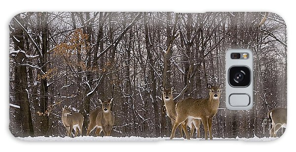 White Tailed Deer Galaxy Case