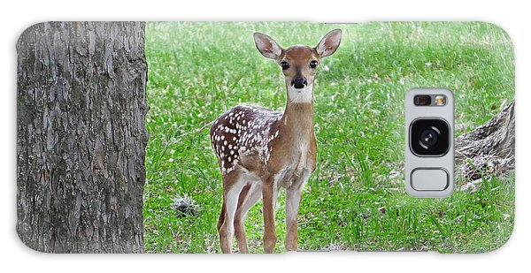 White-tailed Fawn - Face Of Innocence Galaxy Case