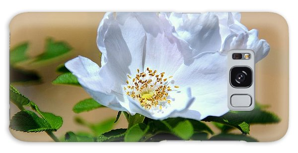 White Tea Rose Galaxy Case