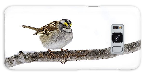 White-throated Sparrow Galaxy Case