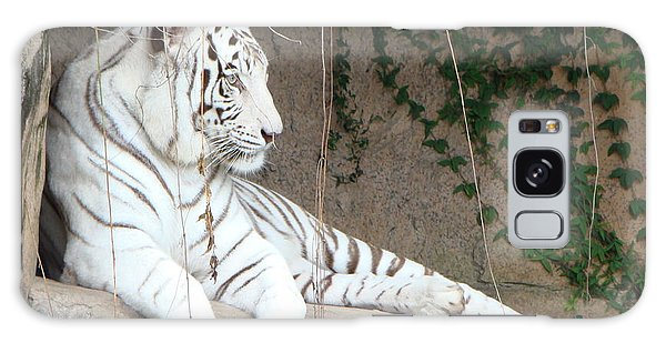 White Tiger Resting Galaxy Case